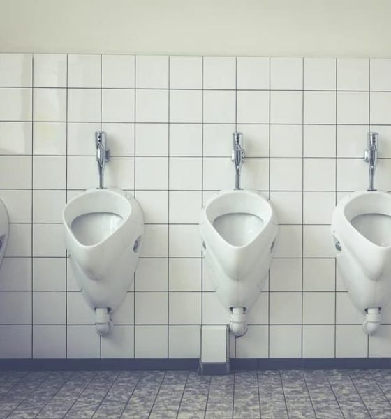 Toilettes blanches